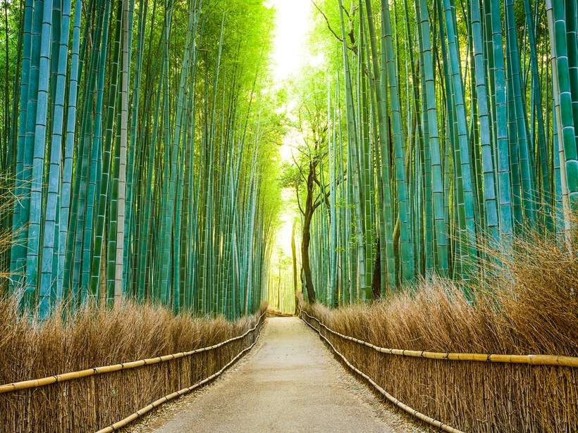25 Most Beautiful Places In Japan Japan Inside
